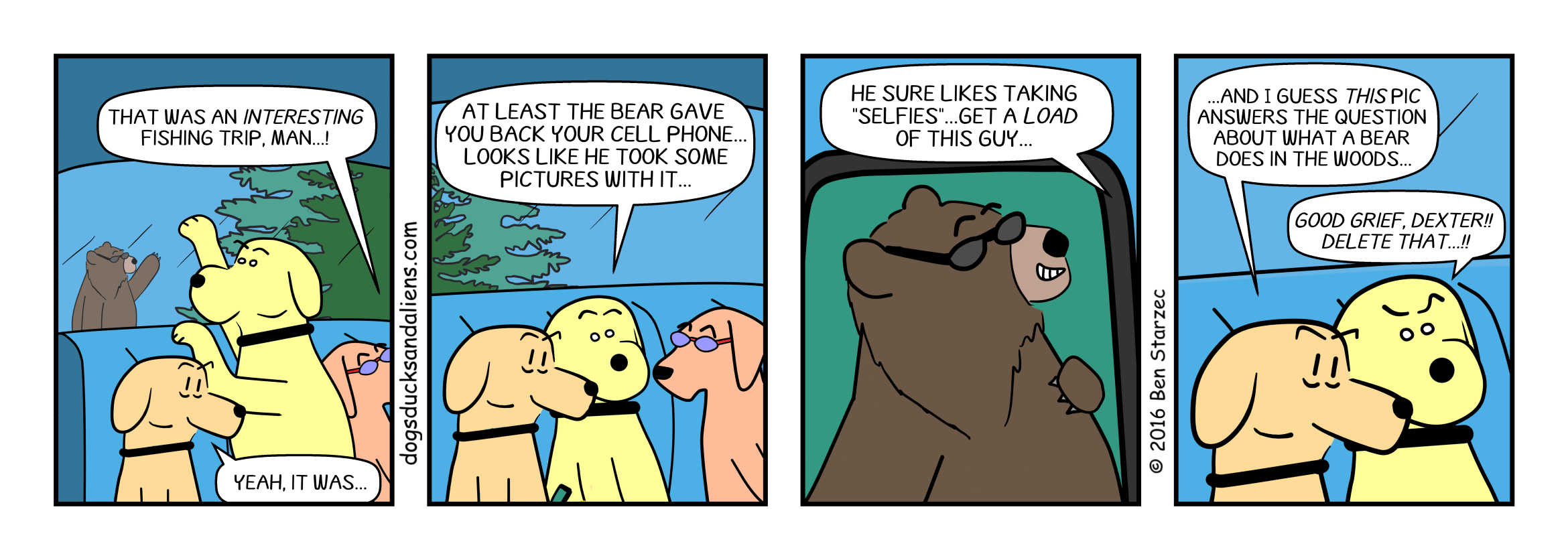 Bear Fact Checker